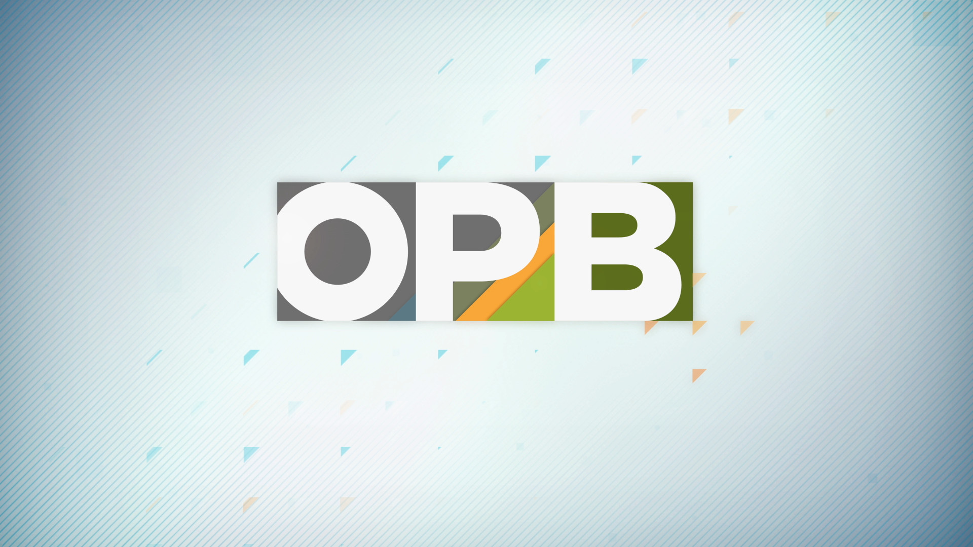 opb_plus-logo_build-3