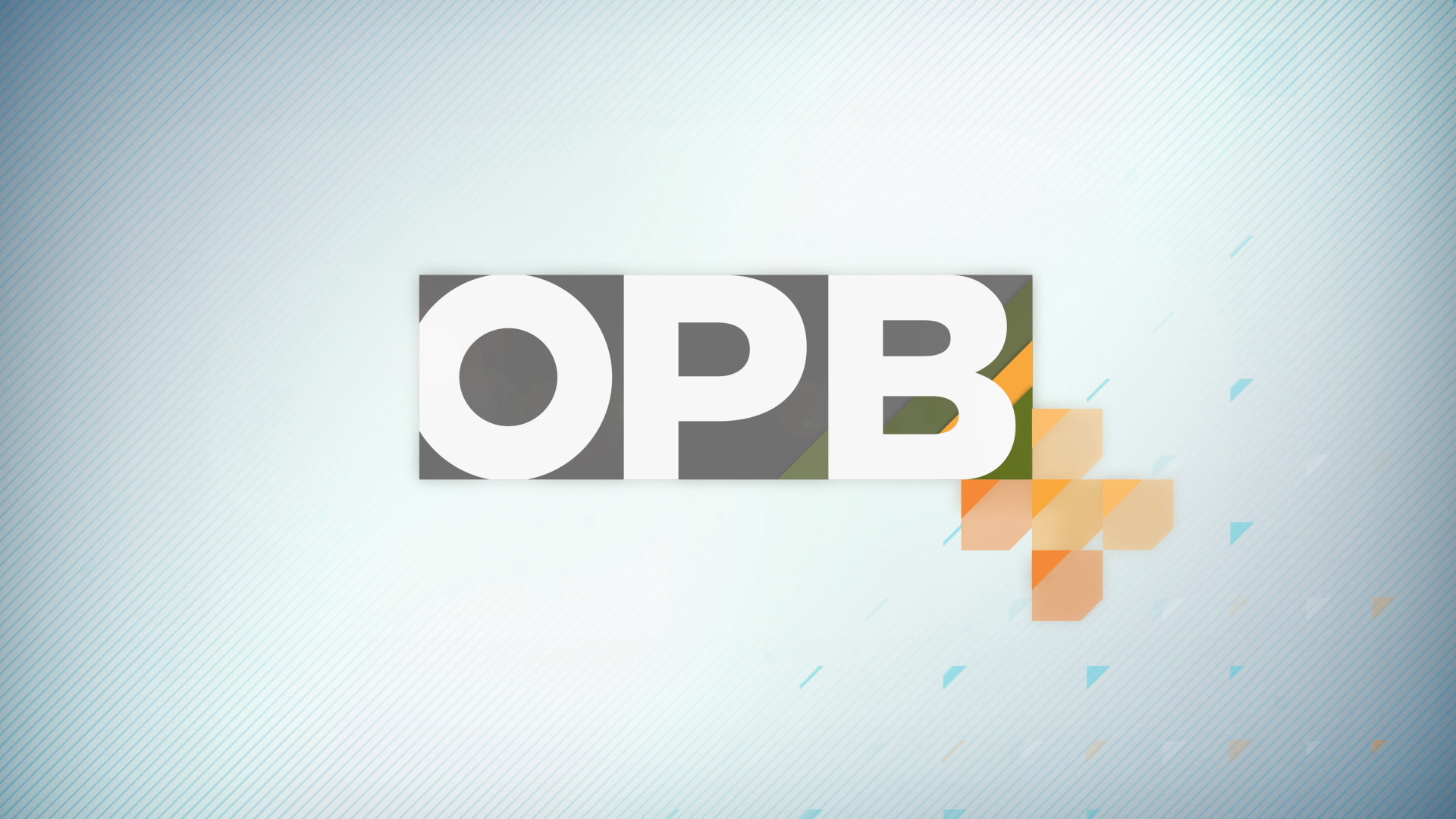 opb_plus-logo_build-4